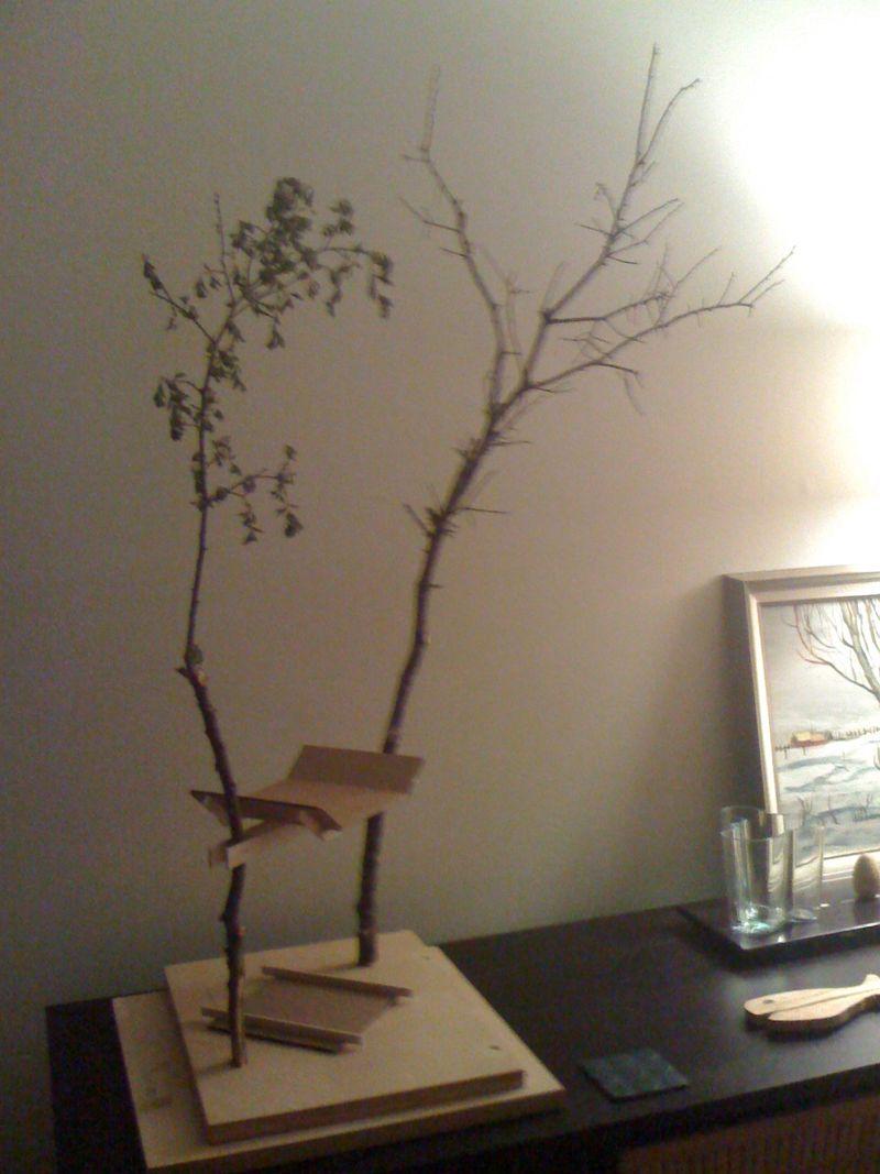 Peter-Brown-tree-house-01