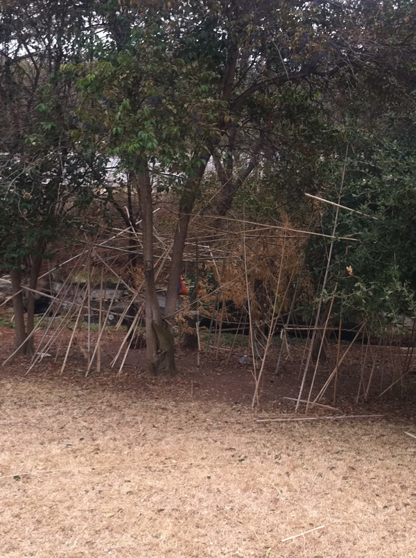 Wesley prep bamboo forest spaces peter brown
